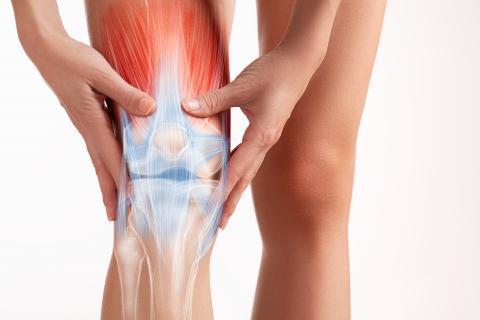 Fisioterapia y punción seca clinica adn fisioterapia jerez masajes, descargas musculares, vendaje neuromuscular electroestimulación cadiz